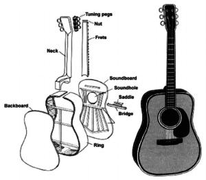 Acoustic Guitar Parts