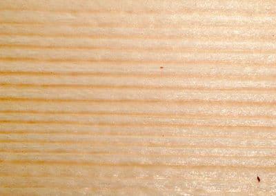 Adirondack Spruce (Red Spruce)