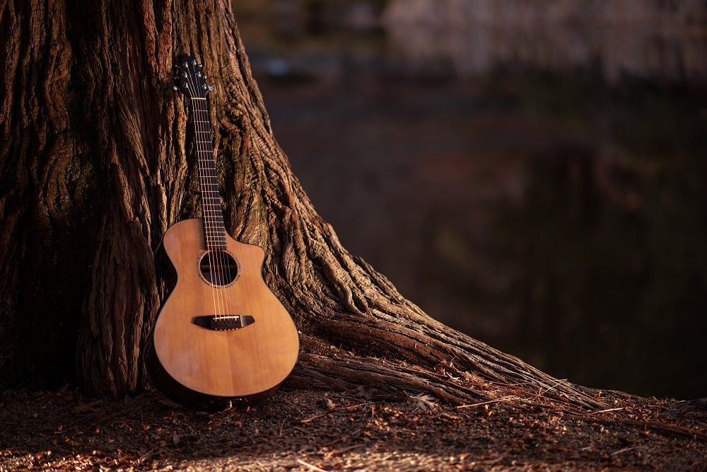 The Definitive Buying Guide for Acoustic Guitars