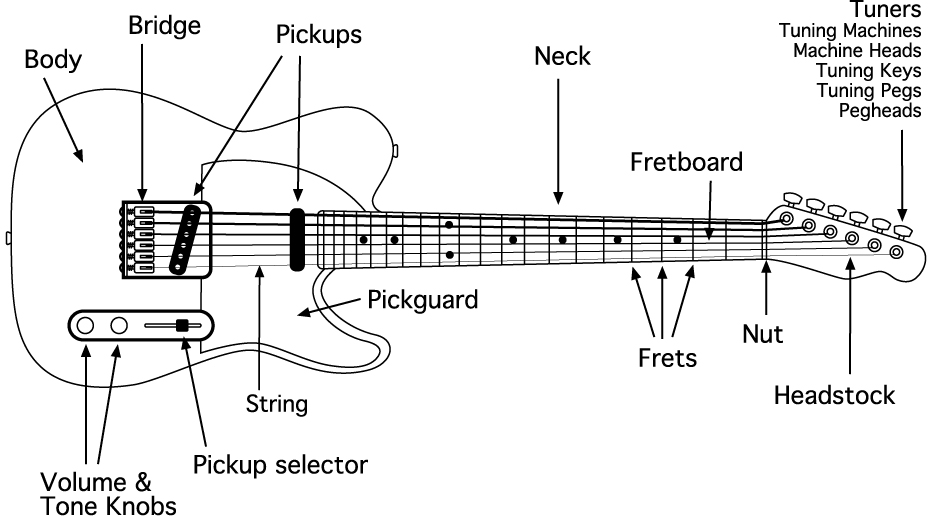 The Ultimate Buying Guide for Electric Guitars - Buzz Harmony