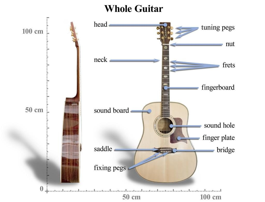 buying guide for acoustic guitars