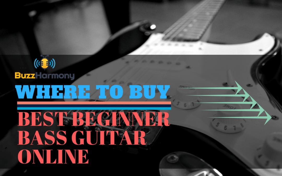review for the best beginner bass guitar