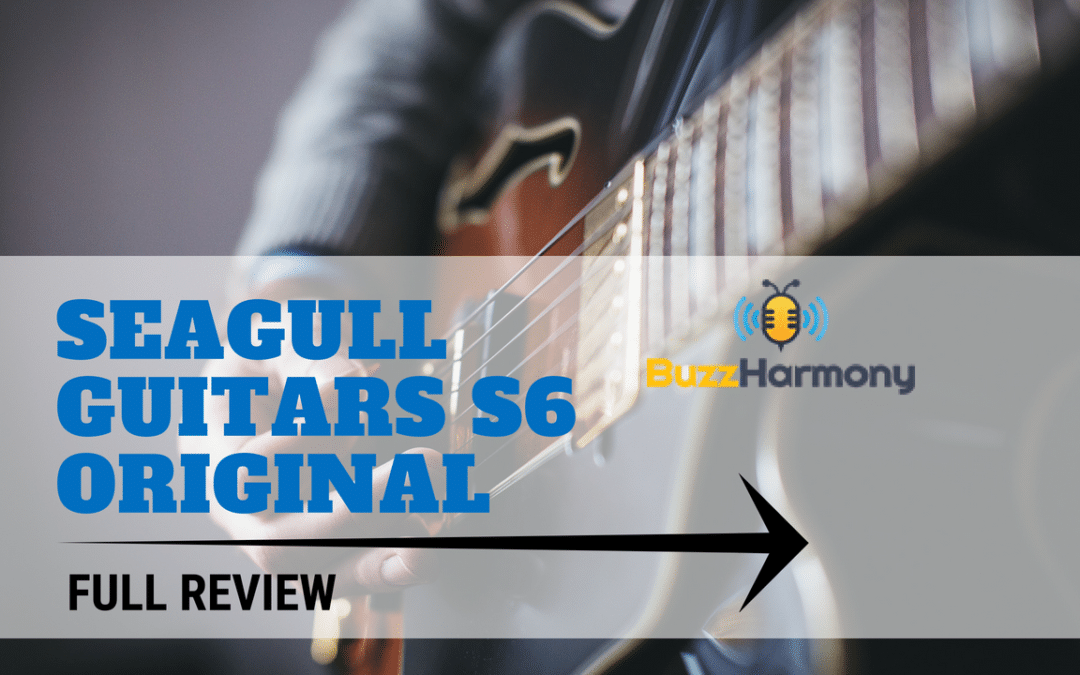 Seagull Guitars S6 Original Review