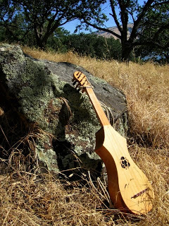 a vintage guitar leaning on the rock